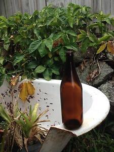 750ml brewing bottles (xxxx) Westlake Brisbane South West Preview