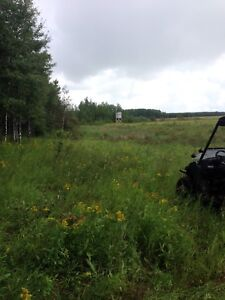 320 ACRES OF PASTURE LAND FOR LEASE IN THE RM OF PADDOCKWOOD