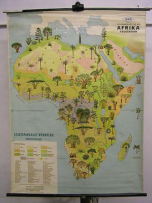 Schulwandkarte Afrika Africa 9,5Mio Wandkarte Karte 60x Vegetation 88x118 map