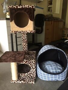 Cat tower/ bed Pacific Pines Gold Coast City Preview