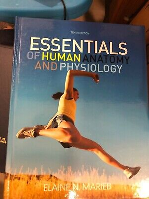 Essentials of Human Anatomy And Physiology, Tenth (Essentials Of Human Anatomy & Physiology 10th Edition)