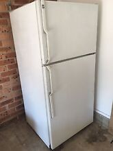 General Electric fridge and freezer (made in USA works perfectly) Canada Bay Canada Bay Area Preview
