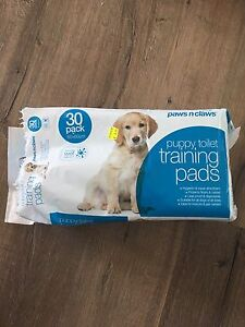 Puppy Toilet Training Pads Wellington Point Redland Area Preview