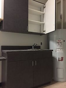 Upper/lower cabinets and sink