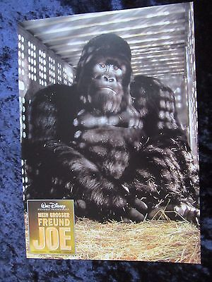 Mighty Joe Young -  lobby cards/stills - Charlize Theron, Bill Paxton