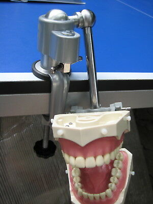 Dental Mounting Pole For Dentoform Columbia Frasaco Kilgore Nissin Typodont New