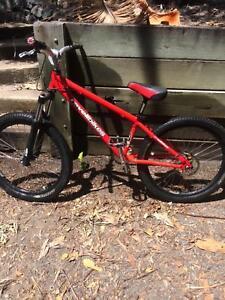 "Revel 24"" jump bike"