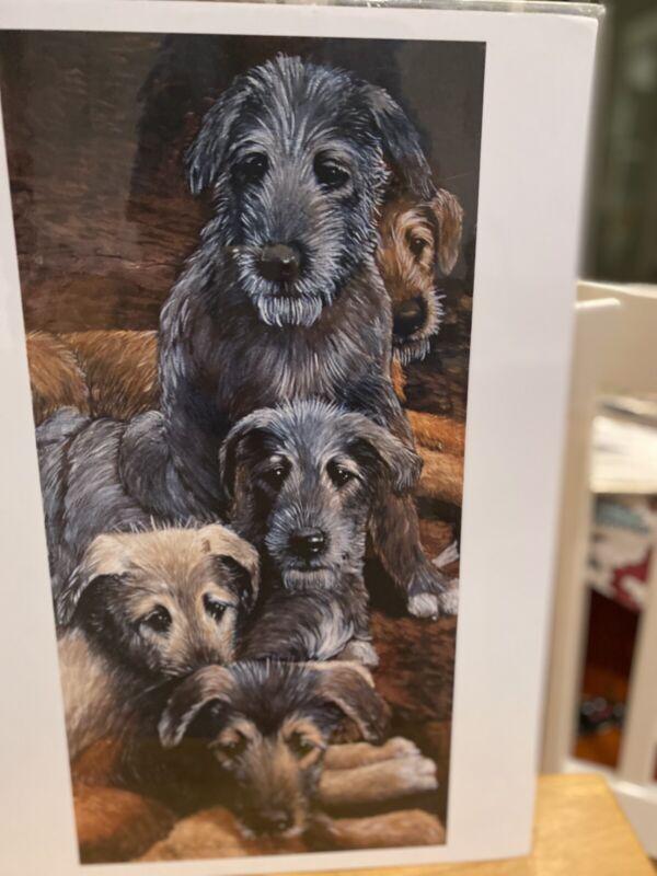 Irish Wolfhound Puppy Heads 11x14 Ltd Ed Print By Martha Van Loan