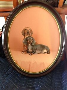 Framed Picture of two dachshunds