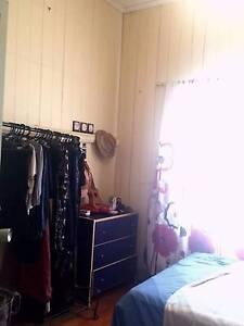 Room in Dutton Park near UQ Dutton Park Brisbane South West Preview