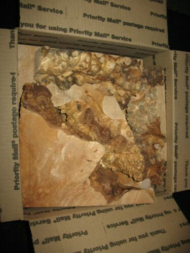 Hobby Wood Box Lot Figured Maple Burl smalls trims woodcraft knife scales