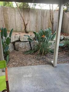 Room to rent Eagleby Logan Area Preview