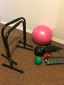 Exercise equipment sold ppu