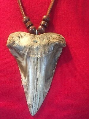 WORLD RECORD FOSSIL MAKO replica tooth CAST INTO A COLORFUL NECKLACE #2