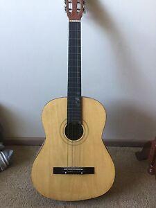 Skylark guitar Padstow Bankstown Area Preview
