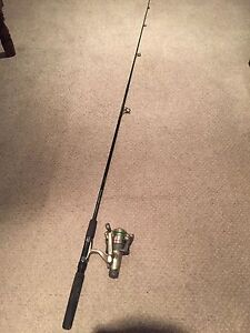Daiwa spinning rod with quantum reel