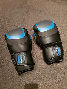 Badboy boxing gloves Docklands Melbourne City Preview