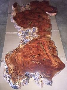 Burl Coffee tables Strathfield South Strathfield Area Preview
