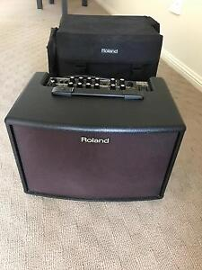 Roland Acoustic Chorus AC-60 Springfield Ipswich City Preview