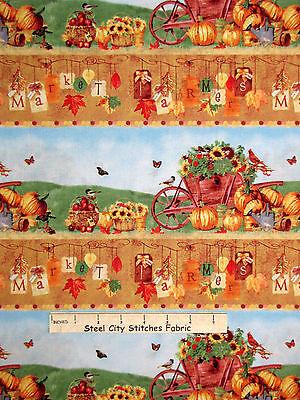 Autumn Farm Fabric - Farmers Market Fall Harvest Border Stripe SPX #25614 - - Fall Border