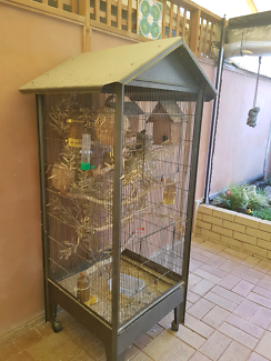Finches Canary Avairy