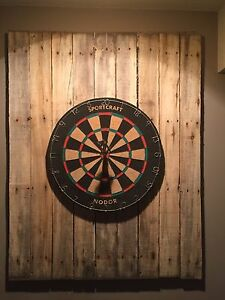 Dartboard with backstop