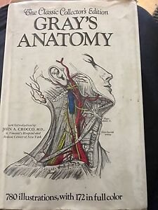 1977 Grays Anatomy O'Connor North Canberra Preview