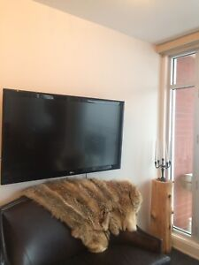 """TV 55"""" LG WITH WALL MOUNT"""