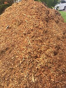 Free Mulch Eastwood Ryde Area Preview