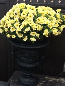 Cast iron planter urn