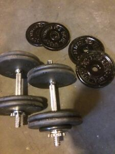Dumbells with 115 lbs of Plates