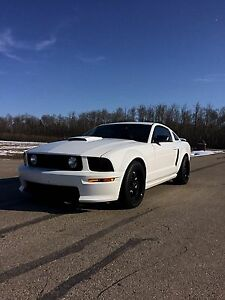 Mint 2009 Mustang GT California special