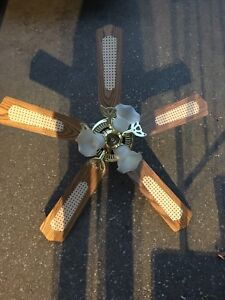 Great Ceiling Fan and Light