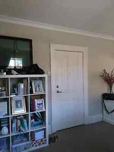 END OF LEASE CLEANER NEEDED Lewisham Marrickville Area Preview