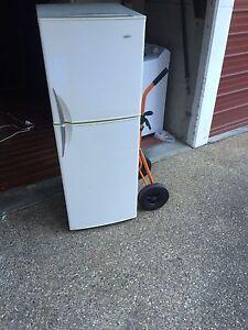 fridge &freezer Campsie Canterbury Area Preview