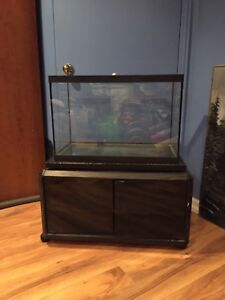 Aquarium / TV Stand
