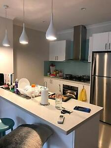 Carlingford Brand New Apartment Second Room for Rent Carlingford The Hills District Preview