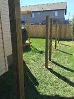 Install fence posts