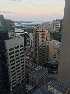 shared room for two females, great location, 393 Pitt St Haymarket Inner Sydney Preview