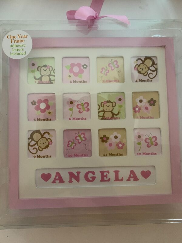 One Year Baby Girl 12 Picture Frame Customizable baby room~frames