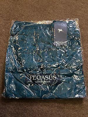 Pegasus Leisurewear Swim Shorts/Jade - Large