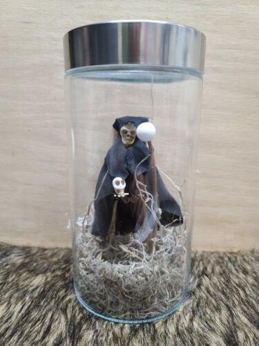 Dead Witch in a Bottle