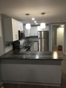 New Basement Suite for rent
