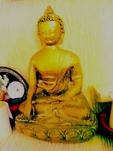Large Gold Brass Buddha Caringbah Sutherland Area Preview