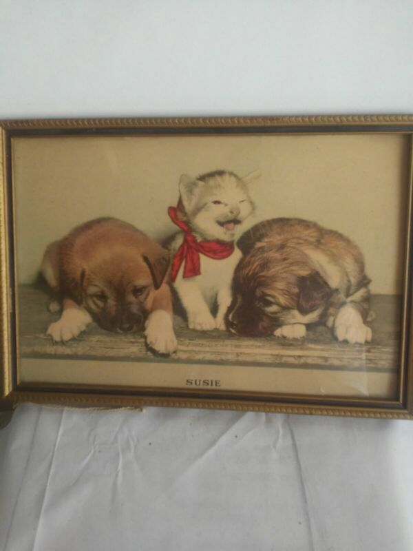 Vintage Gold Framed kitten and puppies Picture Print called susie 1940s