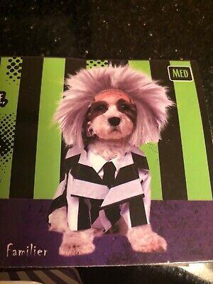 Beetlejuice Dog Costume (Beetlejuice Dog Pet Costume Funny Rubies Pet Shop  Outfit Halloween NEW)