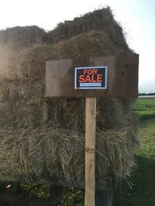 Hay for sale small squares