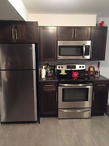 Beautiful above ground basement apt all inclusive