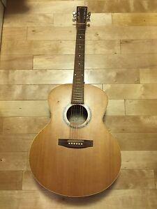 Guitare acoustique NORMAN B20 MJ