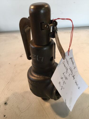 Consolidated Porterville Valve Company Relief Valve 1543F-XMX1